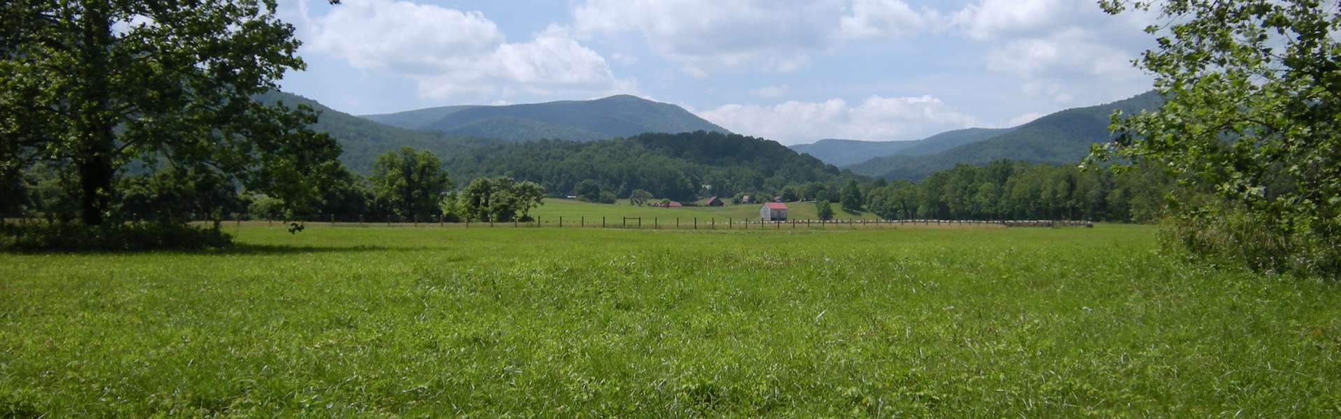 Blue Ridge Mountain View